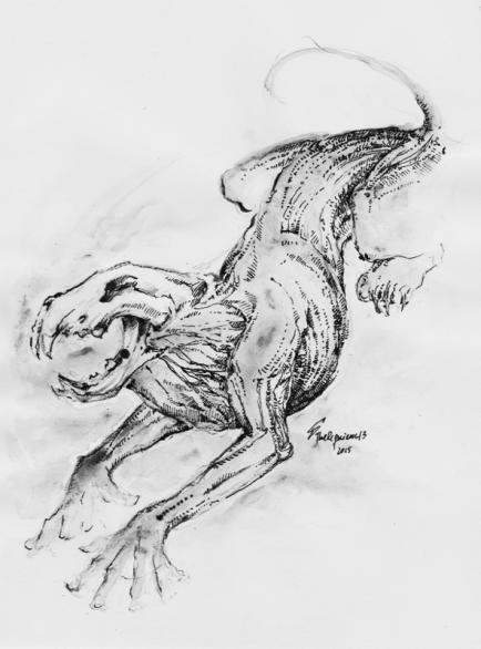 Sin Sketch